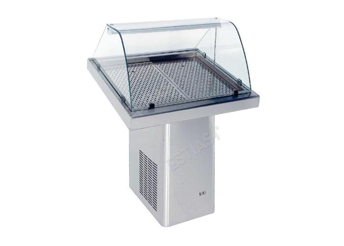 Ψυγείο προβολής ψαριών 100εκ